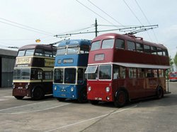 Pick Your Trolleybus!